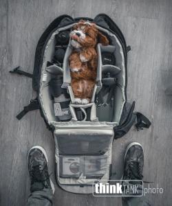 thinktank-backpack-banner
